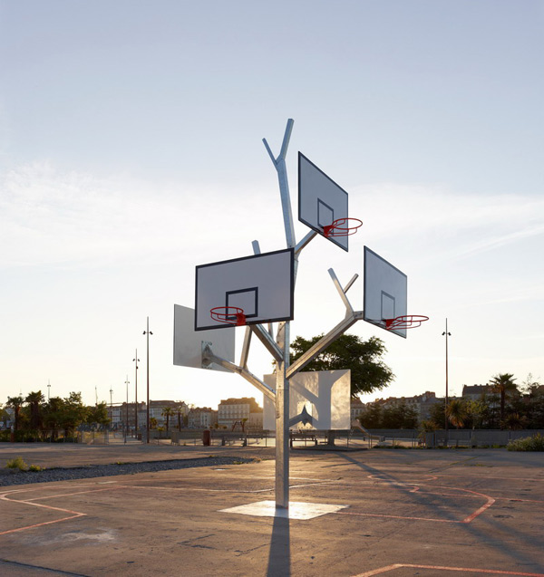 arbre basket nantes