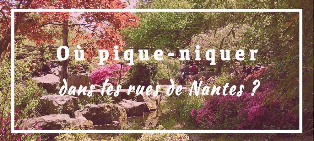 Pique-nique Nantes