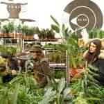 grand vente de plantes