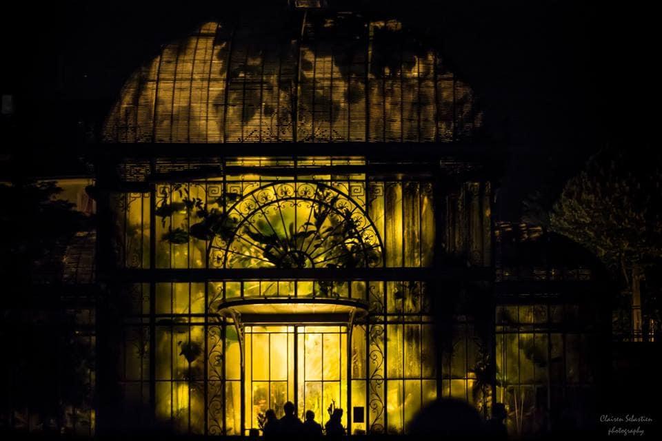 Vivez des nuits féériques au Jardin des Plantes - BigCityLife