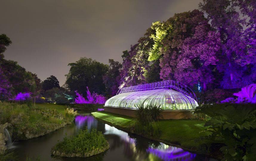 Vivez Des Nuits Feeriques Au Jardin Des Plantes Bigcitylife