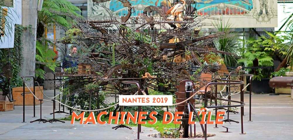 machines de lile paresseux
