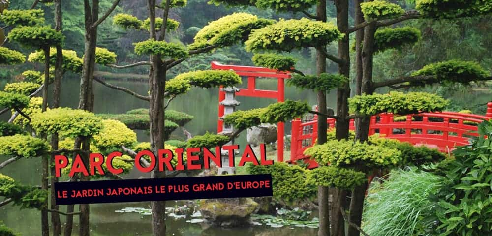 le plus grand jardin japonais d'Europe parc oriental de maulevrier 3