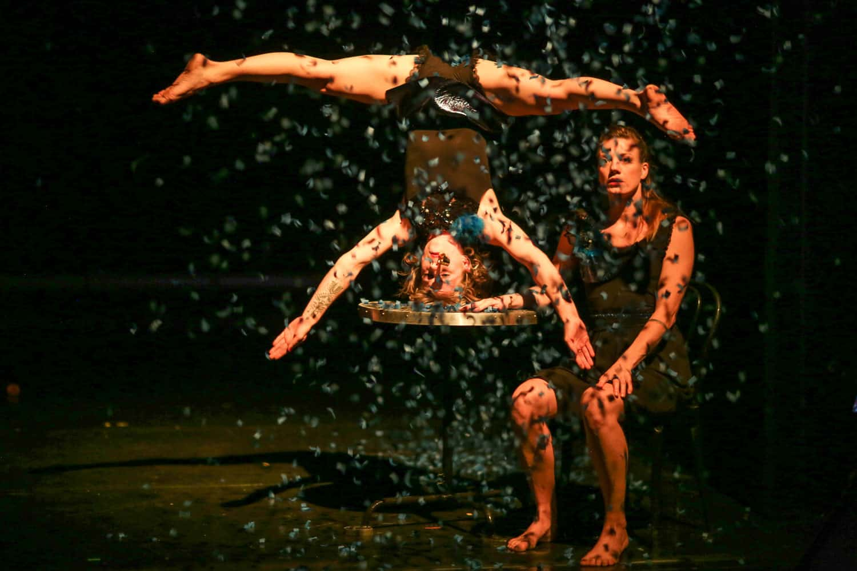 Cirque festival ici et maintenant onyx