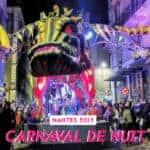 carnaval de nuit nantes 2019 1