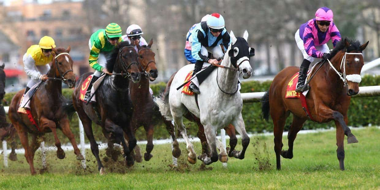 Hippodrome-de-Nantes-galop-course