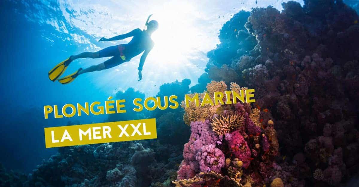 la mer xxl plongee sous marien exposition nantes 2019