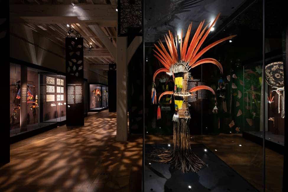 Amazonie : la nouvelle exposition du château des Ducs !