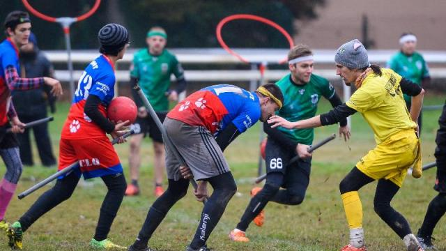 quidditch sports insolites top