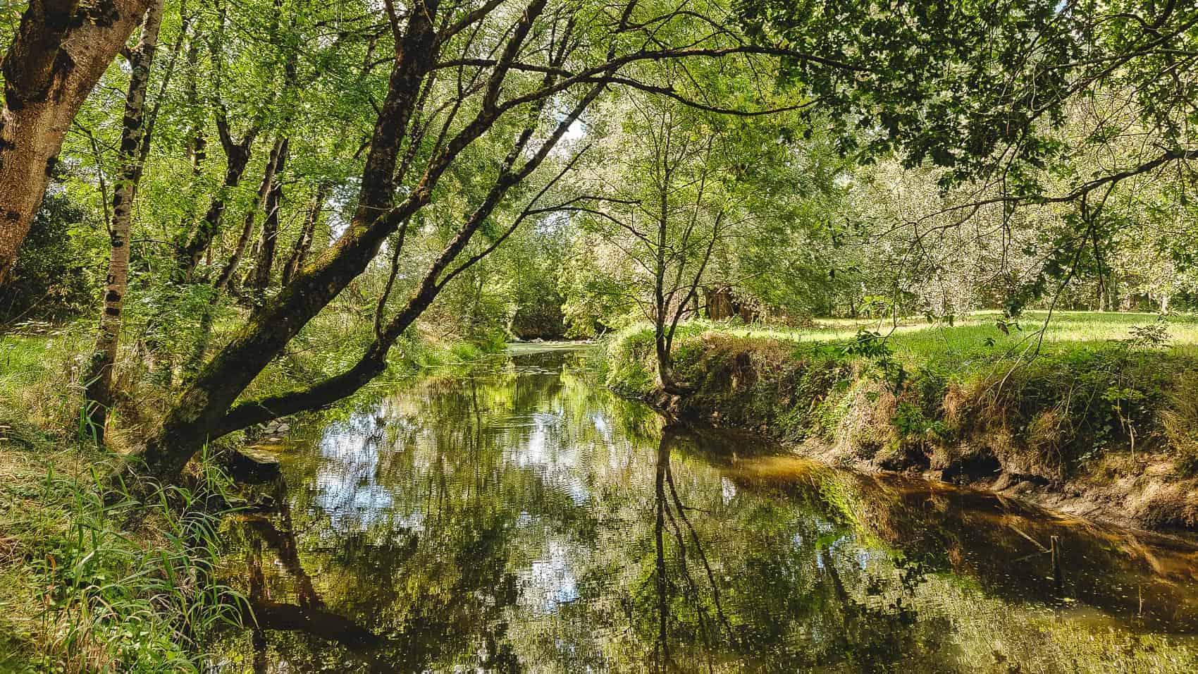 les marais de pont-saint-martin randonnees nantes balade 1