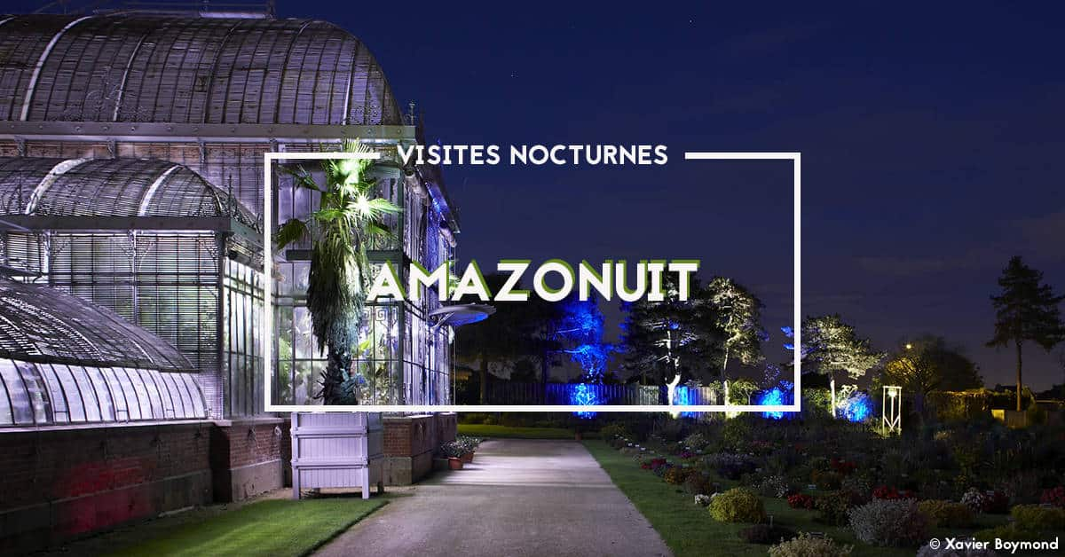 visites nocturnes au jardin des plantes par chateau des ducs de bretagne 2019