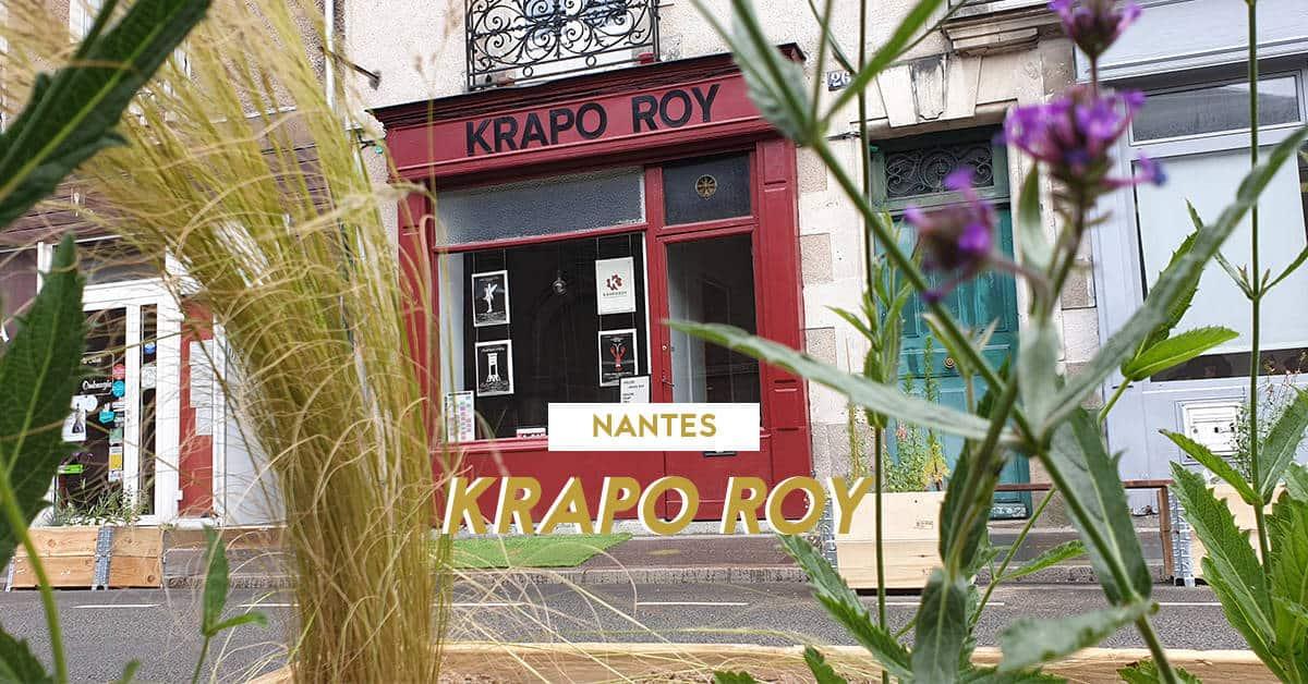 theatre krapo roy nantes 2