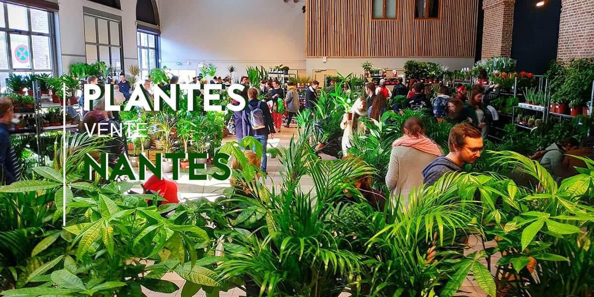 Nantes : Grande Vente de plantes à partir de 2€ !