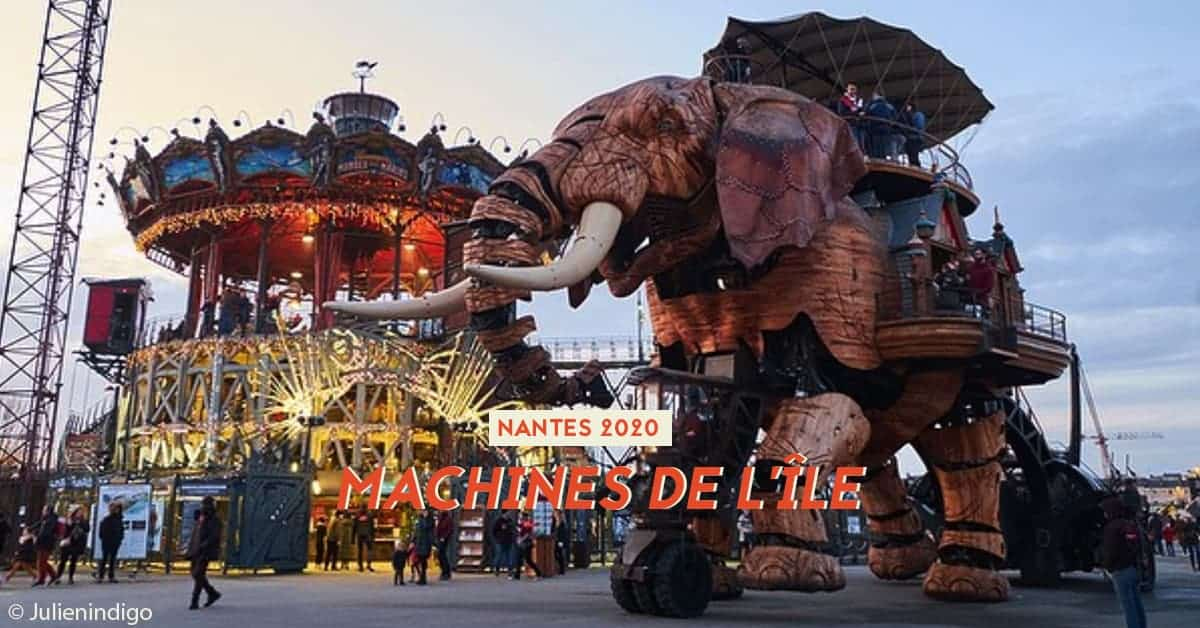 machines de lile elephant 2020