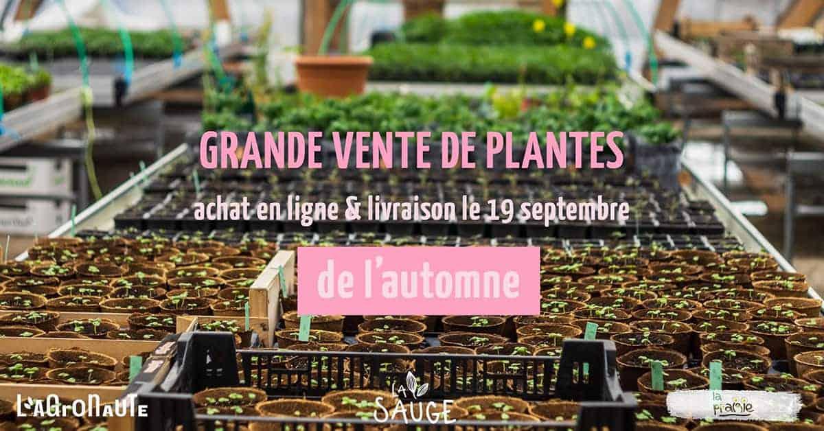 vente-de-plante-agronaute-sauge-nantes-2020