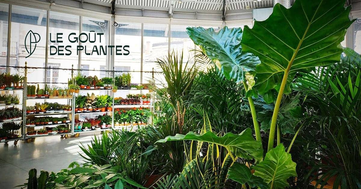 gout-des-plantes-marché-nantes